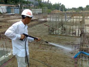Biện pháp phòng chống mối cho công trình xây dựng